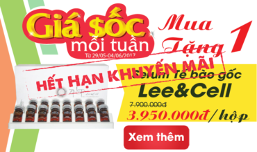banner-nhỏ-khuyenmai.vienmy.vn_